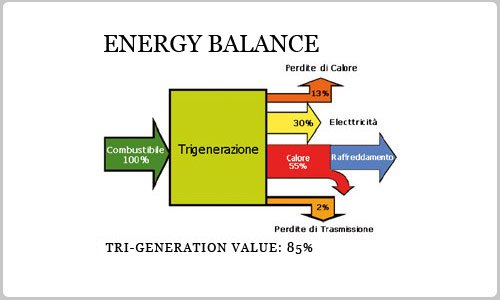 Cogeneration And Turbogas